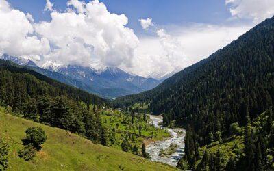 Karamat Ali Khan — A Short Story by O. Kashmiri