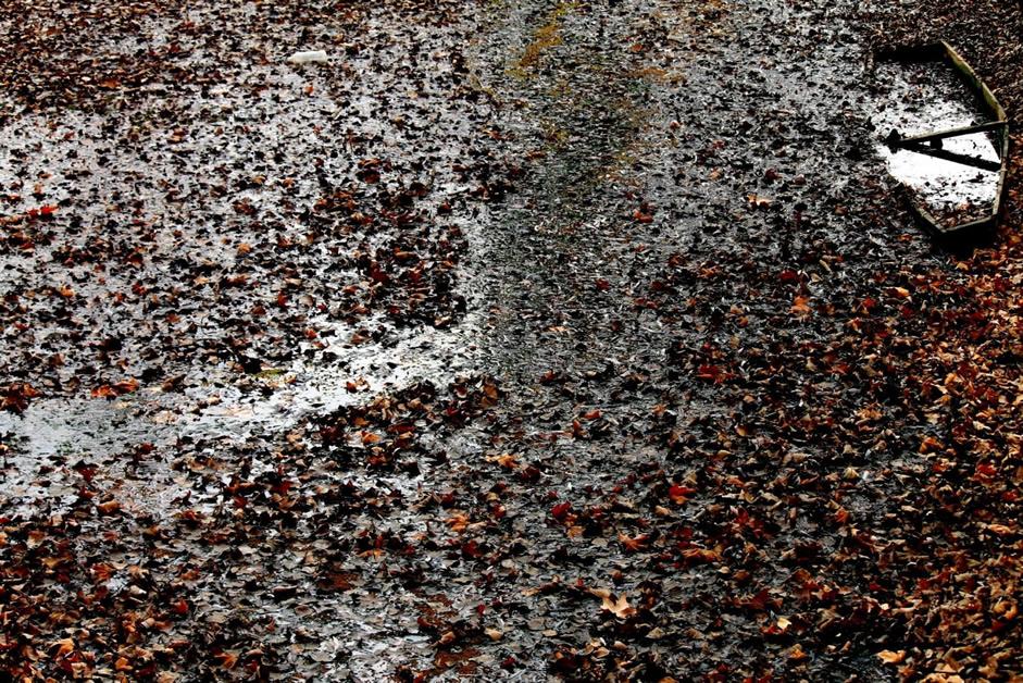 Jaun Elia: The Garbage Dump of History — Translated and Introduced by Muzaffar Karim