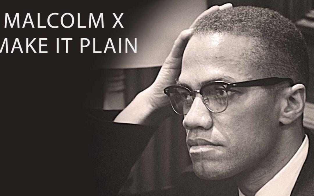 Malcolm X: Make It Plain (1994) — by PBS