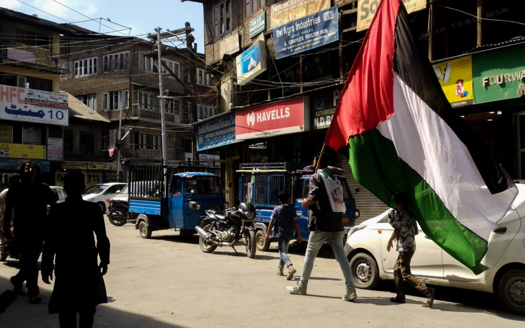 From the Streets of Kashmir to the Heart of Palestine — A Photograph by Zainab